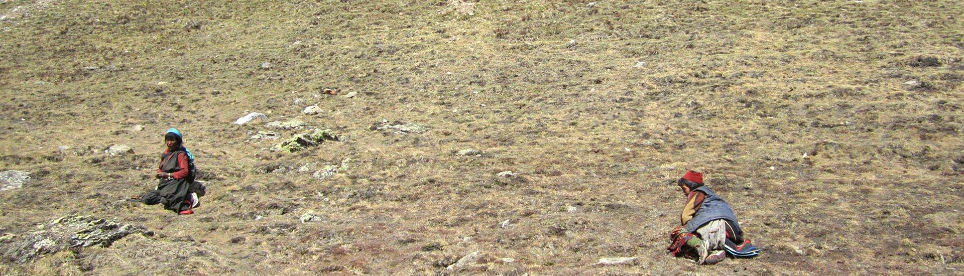 Yarsagompa-trek (1)