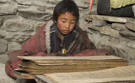 a dolpo boy reading book image