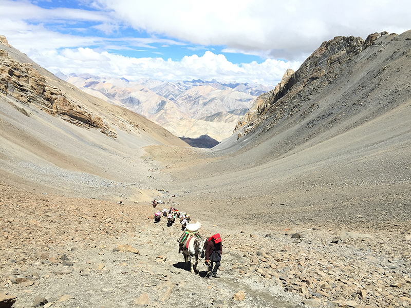 dolpo trekking nepal